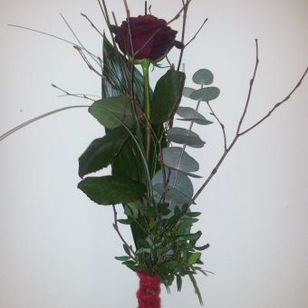Rote Rose: Scarlett
